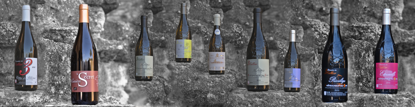Dme 3 Cellier - Our wines