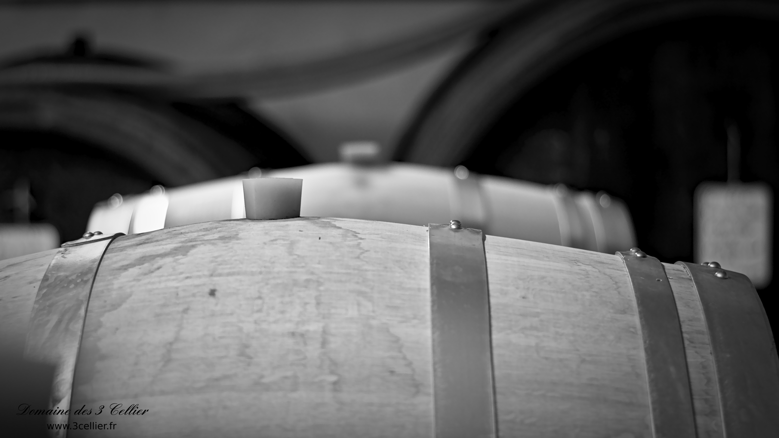 Dme 3 Cellier - Winery