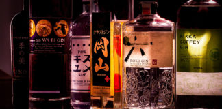 Getting To Know Japanese Gin