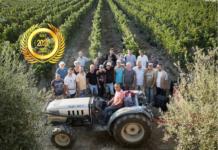 Società Agricola Palmeri Famiglia Breitschmid-Heiniger Srl