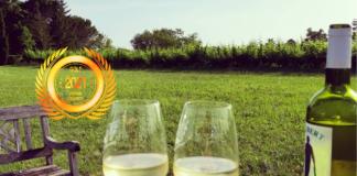 SAS Vignobles Jaubert : A traditional viticulture with a modern spirit by Business News Japan