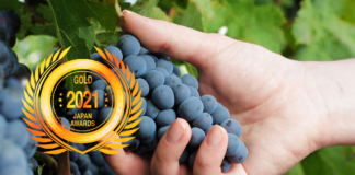 Nobel Chile SpA : Outstanding Wines with Exceptional Terroirs by Business News Japan